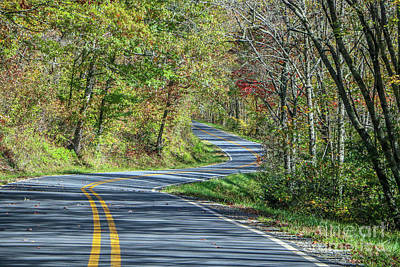 Photograph - Winding Road by Tom Claud