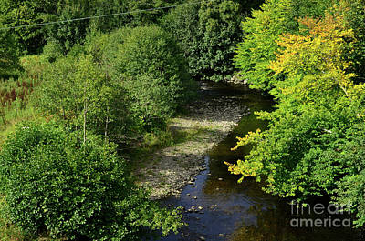 Photograph - Winding Stream Through Wooded Trees In Scotland by DejaVu Designs