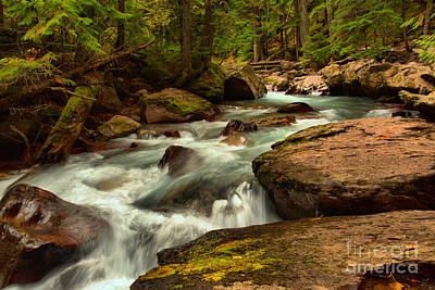 Photograph - Winding Through Avalanche Creek by Adam Jewell