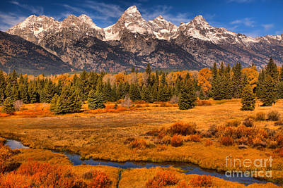 Photograph - Winding Through The Fall Willows by Adam Jewell