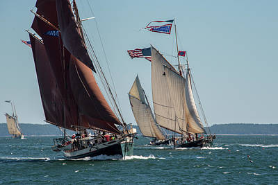 Photograph - Windjammer Race 2 by Fred LeBlanc