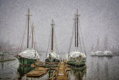 Photograph - Windjammers In Winter by Fred LeBlanc