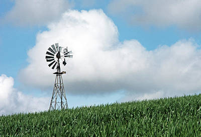 Photograph - Windmill And Bird by Doug Davidson