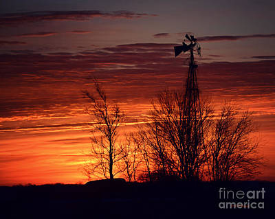 Photograph - Windmill And Trees At Sunrise by Kathy M Krause