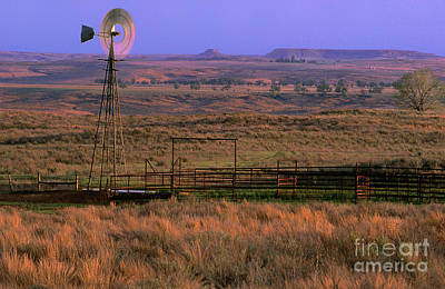 Photograph - Windmill Cattle Fencing Texas Panhandle by Dave Welling