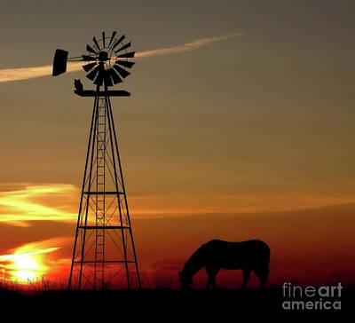 Windmill Sunset Art Print by Anthony Djordjevic