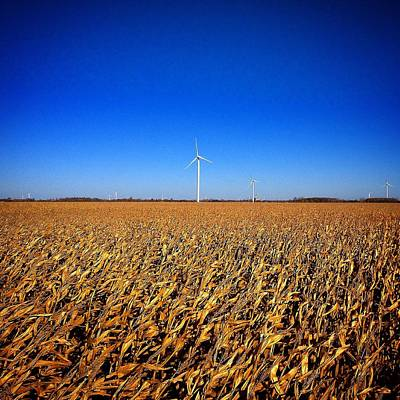 Photograph - Windmills And Corn by Chris Brown