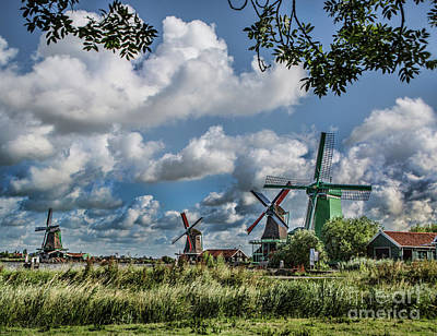 Photograph - Windmills Of Holland by Shirley Mangini