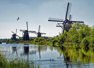 Photograph - Windmills Of Kinderdijk, Netherlands by Phil Cardamone