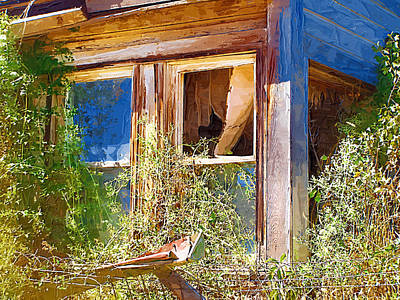Art Print featuring the photograph Window 2 by Susan Kinney