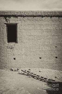 Photograph - Window And Ladder by Hitendra SINKAR