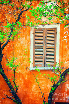 Photograph - Window And Tree by Silvia Ganora