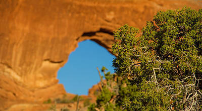 Photograph - Window Arch by Kunal Mehra