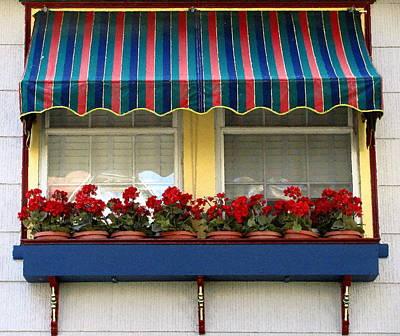 Window Box Geraniums Art Print by Colleen Kammerer