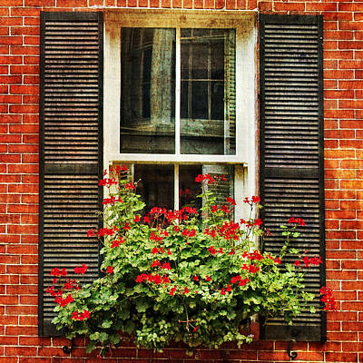 Photograph - Window Box by Joann Vitali