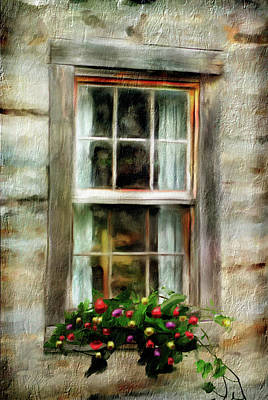 Photograph - Window Box by Mary Timman