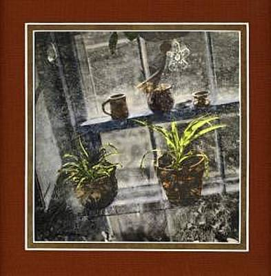 Print - Window Box Tint by Jim Marzano