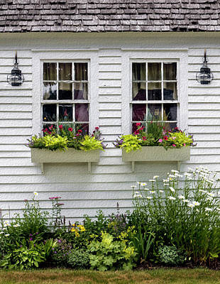 Photograph - Window Boxes And Flowers by Betty Denise