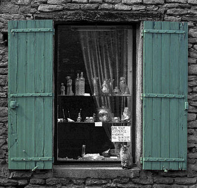 Window Cat Art Print by Rob Outwater