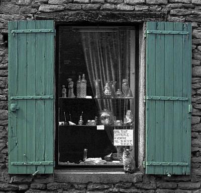 Window Cat Original