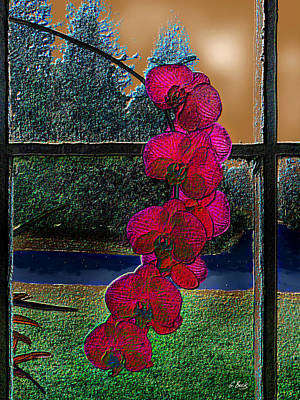 Window Dressing Art Print by Gordon Beck