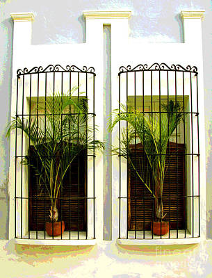 Window Ferns By Darian Day Art Print by Mexicolors Art Photography