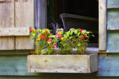 Photograph - Window Flower Box by Ken Barrett