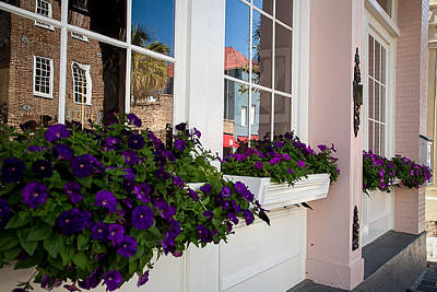 Window Flower Boxes Art Print