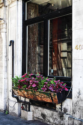 Photograph - Window Flowers by John Rizzuto