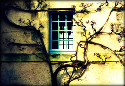 Photograph - Window Frame by Susie Weaver