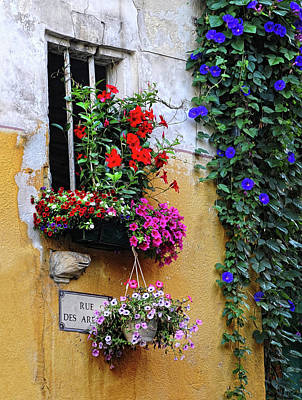 Window Garden In Arles France Art Print by Dave Mills