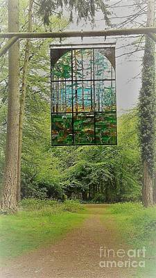 Photograph - Window In The Woods by John Williams