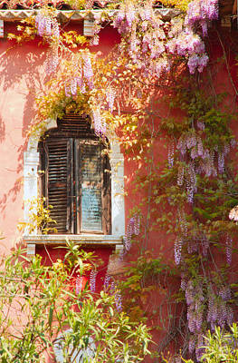 Window In Venice With Wisteria Art Print by Michael Henderson