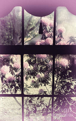 Nostalgia Painting - Window by Mindy Sommers