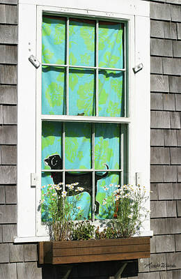 Photograph - Window On Marthas Vineyard Island Massachusetts by Michelle Wiarda-Constantine