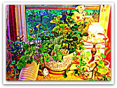 Photograph - Window Plant by YoMamaBird Rhonda