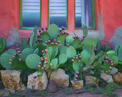 Photograph - Window - Prickly Pear by Nikolyn McDonald
