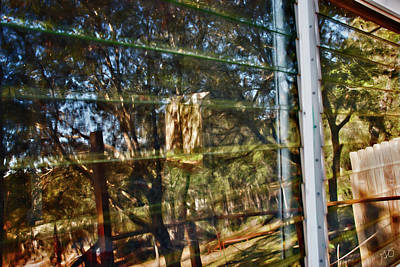 Photograph - Window Reflection by Gina O'Brien