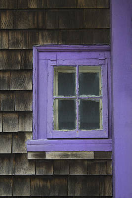 Photograph - Purple Window - Window Series 04 by Carlos Diaz