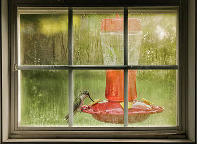 Photograph - Window Sweet by Denis Lemay