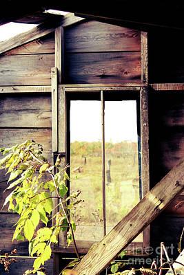 Fall Photograph - Window To Autumn by Nikki Vig