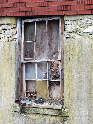 Photograph - Window To Nowhere by Lili Feinstein