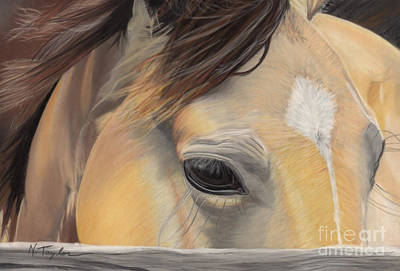 Gelding Pastel - Window To The Soul by Nichole Taylor