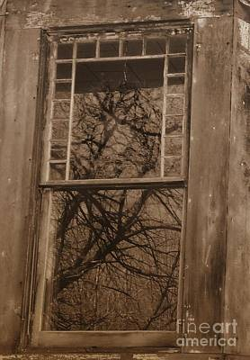 Photograph - Window To The Soul by Vicki Lynn Sodora