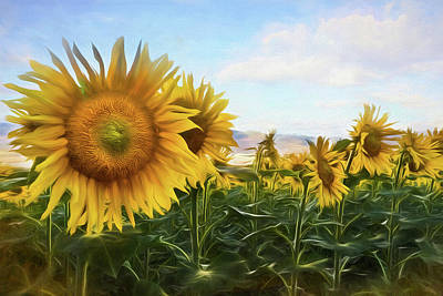 Photograph - Window To The Sunflower Fields Watercolors Painting by Debra and Dave Vanderlaan