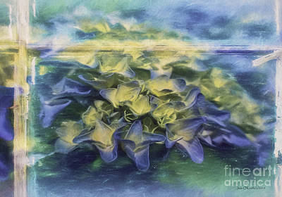 Photograph - Window View by Jean OKeeffe Macro Abundance Art