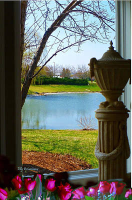 Window View Pond Art Print