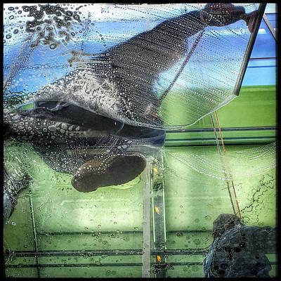 Mfa Photograph - Window Washers by David Stone