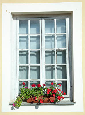 Photograph - Window With Flowers by Ramunas Bruzas