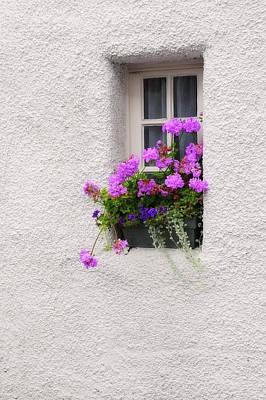 Photograph - Window With Geranium. Culross by Jenny Rainbow